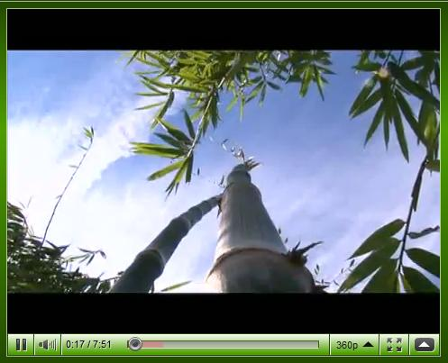 Bambu na TV - Programa Mosaico